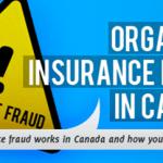 Auto Insurance Fraud in Canada InsurEye Infographic, Small