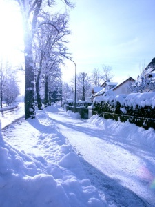 Winter Home Insurance - Street